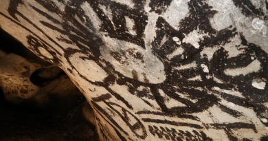 Archaeological News from the Magura Cave