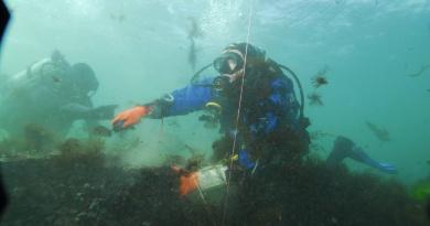 Center for Underwater Archeology